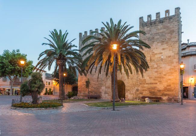 Apartamento en Alcúdia - PERICAS :) Apacible apartamento en primera linea de Alcudia, para 8 personas, WiFi gratis