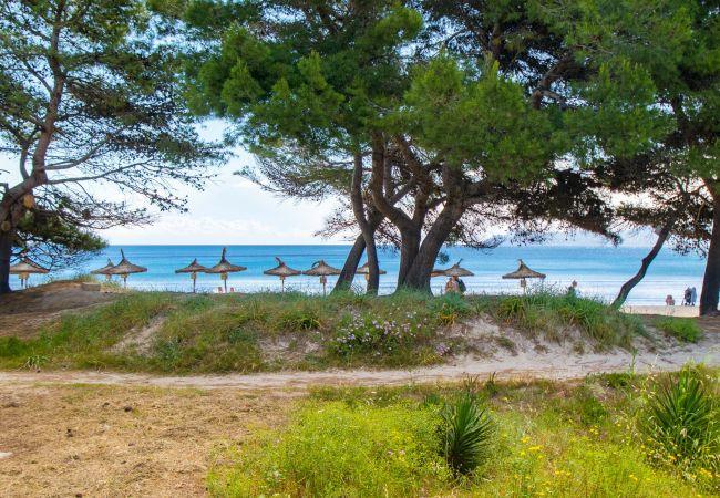 Apartamento en Alcúdia - VIDALBA E:) Precioso apartamento para 6 personas en la playa de Alcudia