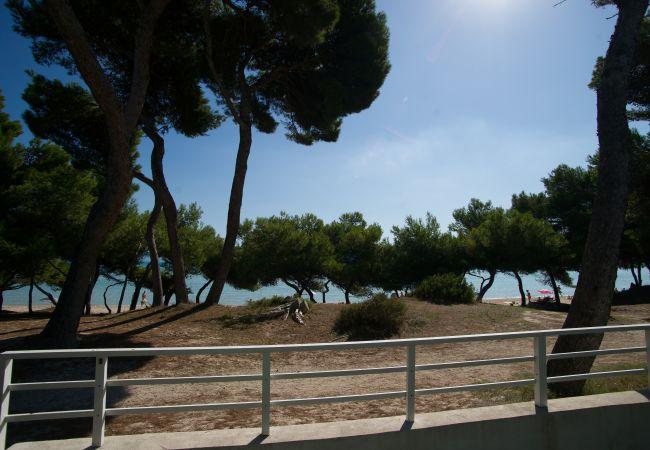 Villa en Alcúdia - YATE :) Villa en primera linea de playa para 12 personas