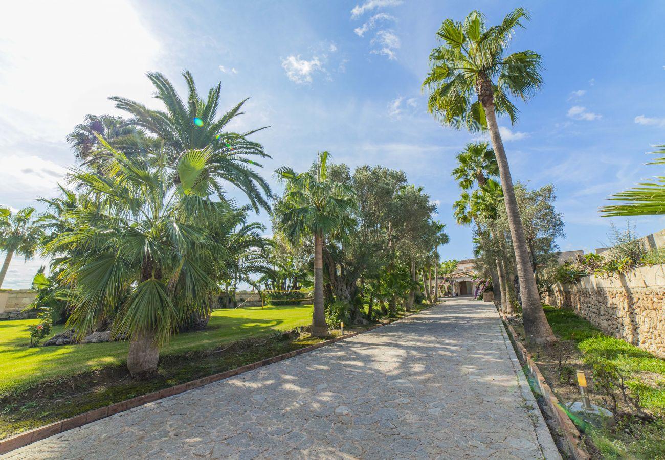 Finca en Can Picafort - Carolin - Finca para 9 personas con Piscina a 4 km de playa