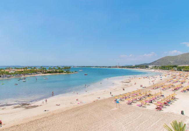 Ferienwohnung in Alcúdia - PINE BEACH:) Apt 4 people close to the beach