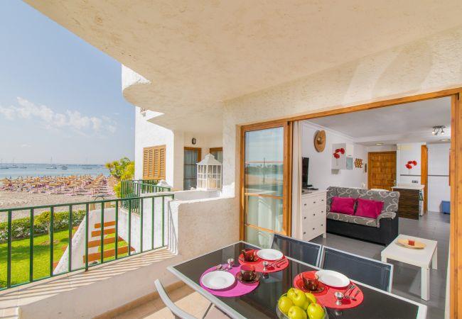 Apartment in Alcudia - ANGLADA :) Apartamento para 4 personas en primera línea de playa